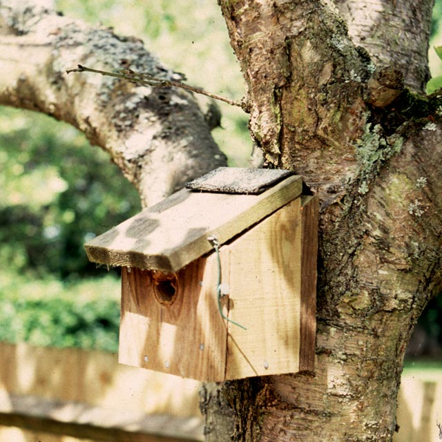 Bird table in a wildlife garden design in Barrow Gurney, near Bristol, Somerset