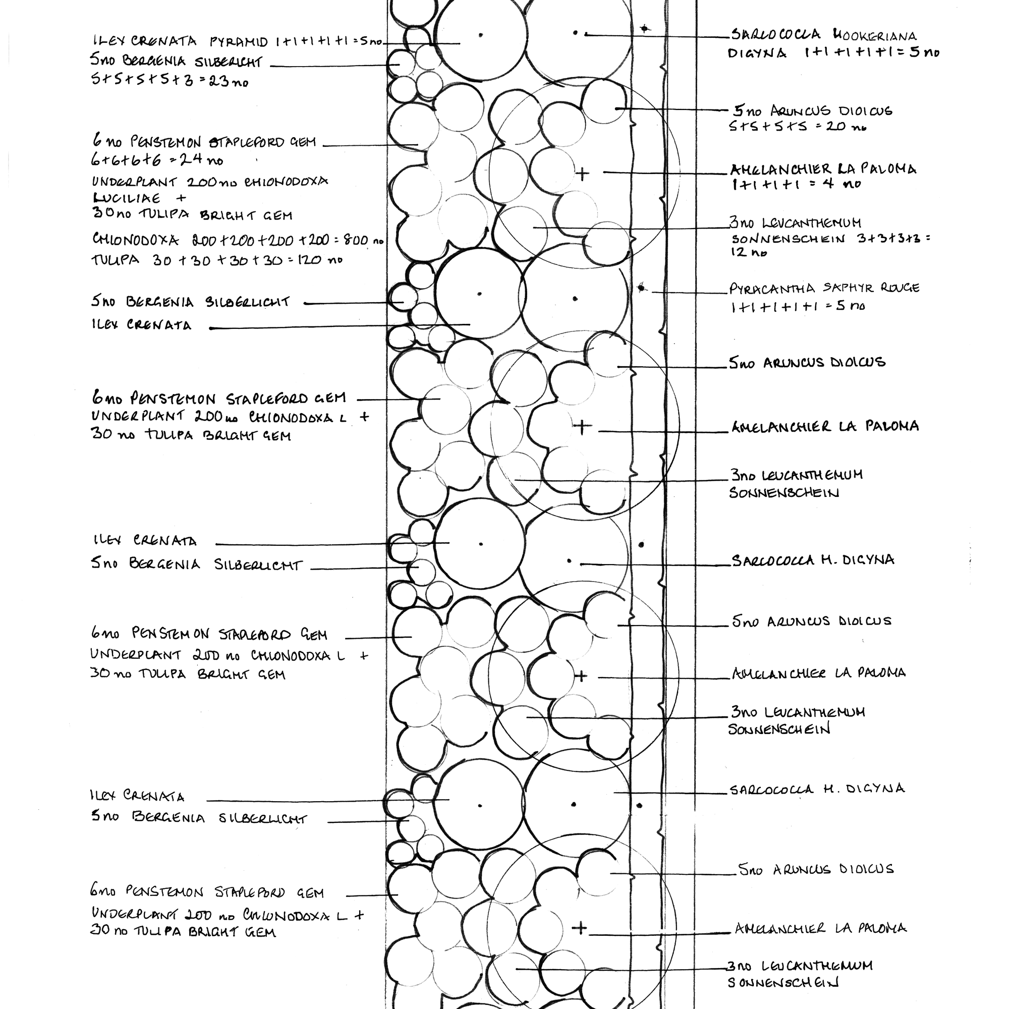 Example planting plan produced for postal and email garden design service